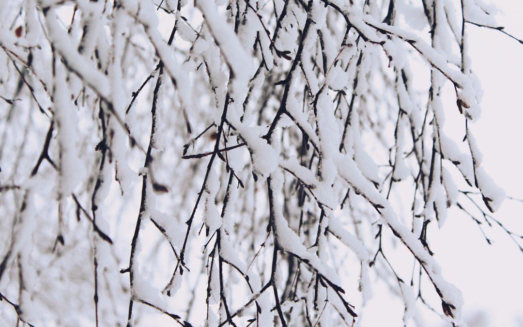 Pourquoi claque-t-on des dents en hiver ?